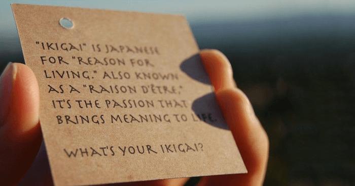 ikigai ratiunea de a fi
