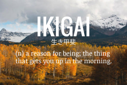 ikigai_citat