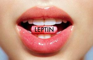 leptina hormon satietate