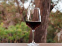vifrana vin bio vin ecologic